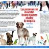 Las personas con mascotas tienen más empatía