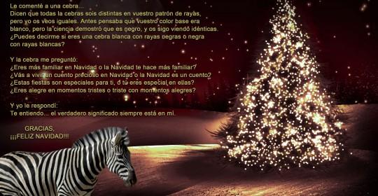 navidad_adela_amado
