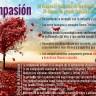 La compasión y sus efectos en la salud psicológica y física